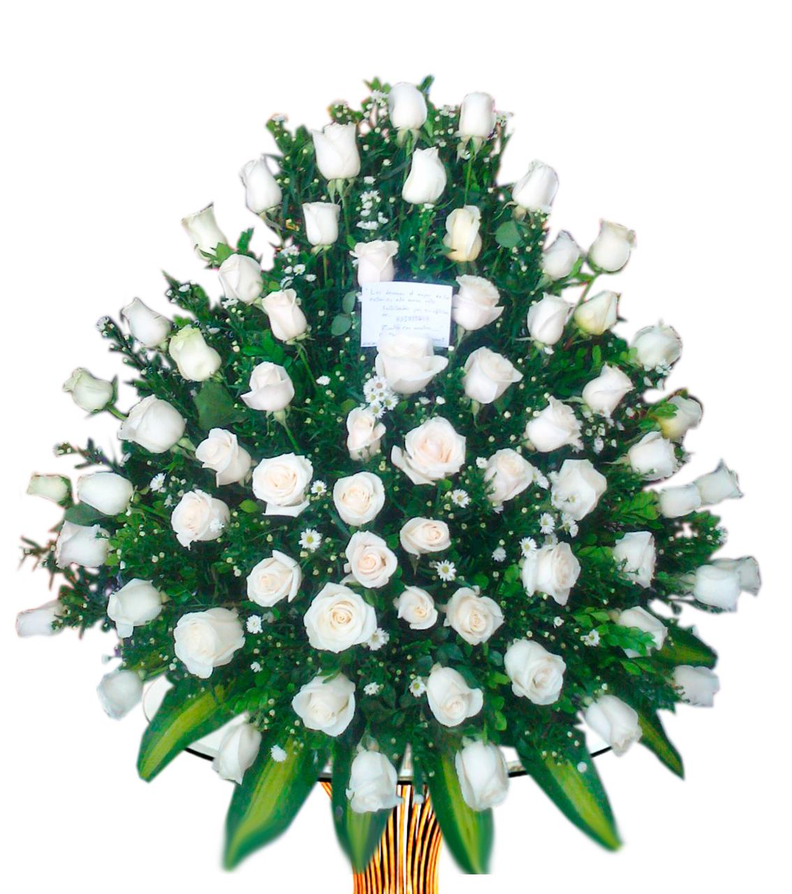 Bouquet Rosa Blanca